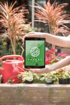 Mani che tengono il modello di tablet con il concetto di giardinaggio