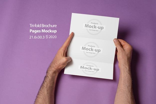 Mannelijke handen die een gevouwen brochure met blanco pagina's op purpere muur houden