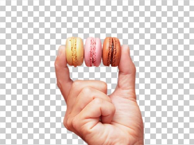 Mano masculina aislada que sostiene bisquits dulces
