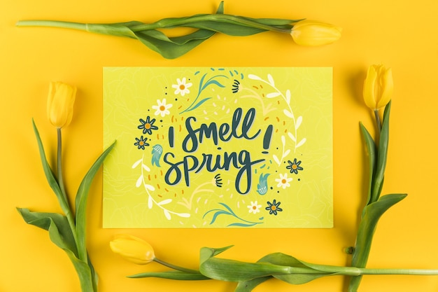 Maqueta flat lay de tarjeta de papel con concepto de primavera