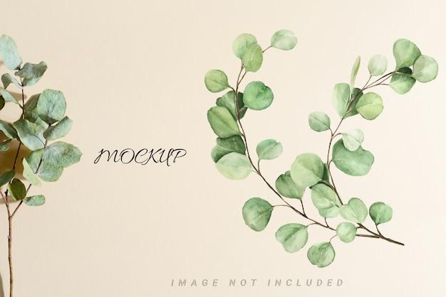 Maqueta con hojas de eucalipto