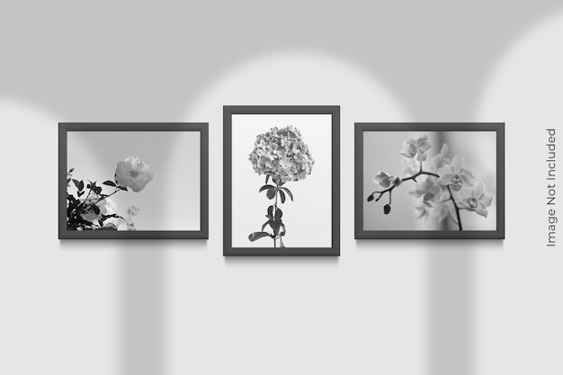 Maqueta de marcos realistas colgados en la pared con superposición de sombras