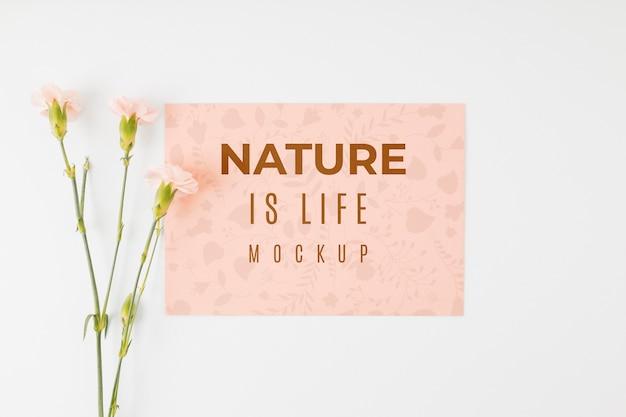 Maqueta plana la naturaleza es cita de vida