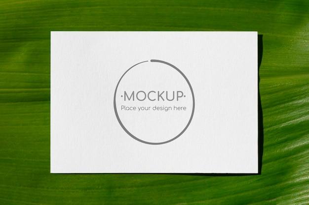 Maqueta de tarjeta de hoja verde