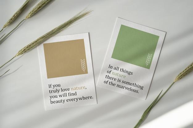 Maqueta de tarjetas