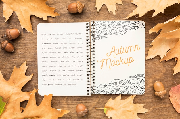 Marco de hojas con cuaderno