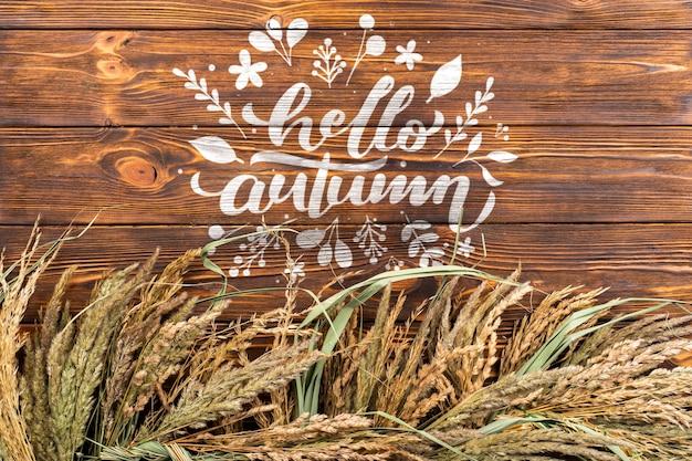 Marco plano laico con granos de trigo