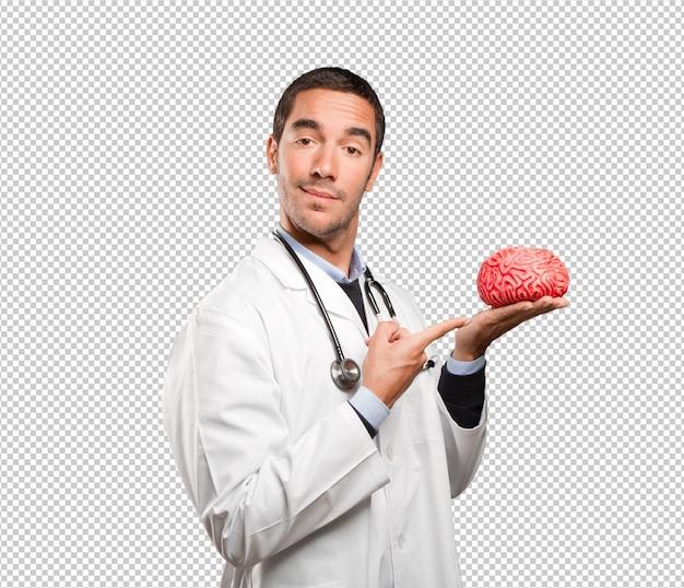 Medico premuroso che tiene un cervello del giocattolo contro fondo bianco