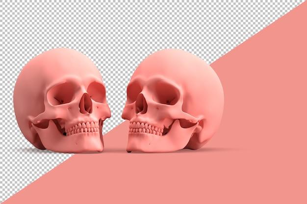 Minimalistische illustratie van een paar menselijke schedel