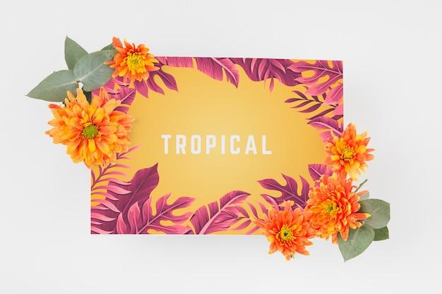 Mockup di copertura tropicale