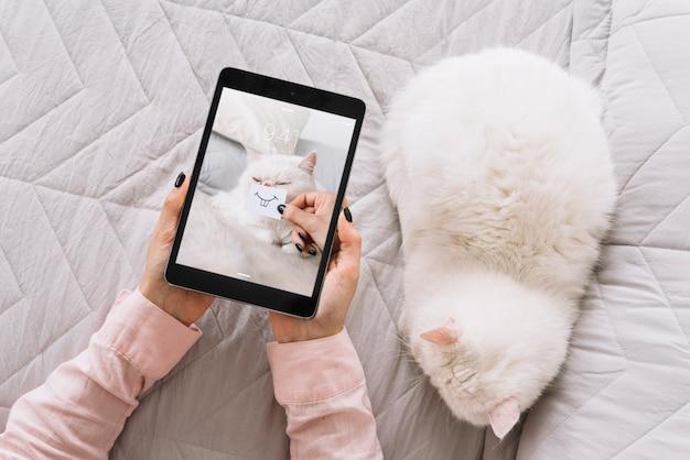 Mockup di gatto e tablet sul divano