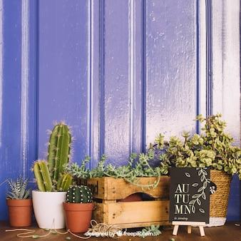 Mockup de jardinería con cactus y tablón