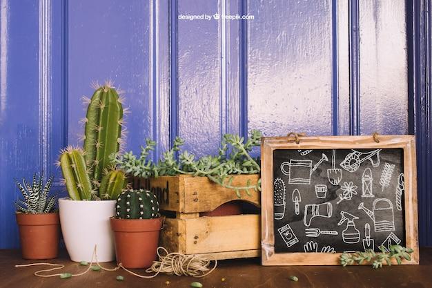 Mockup de jardinería con tres cactus y pizarra