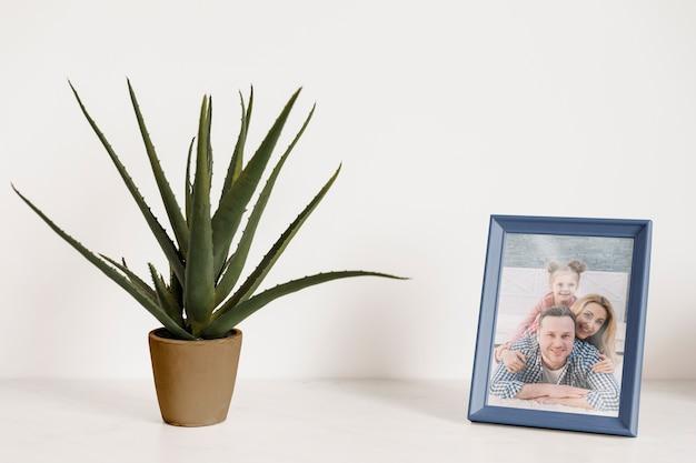 Mockup de marco al lado de una planta