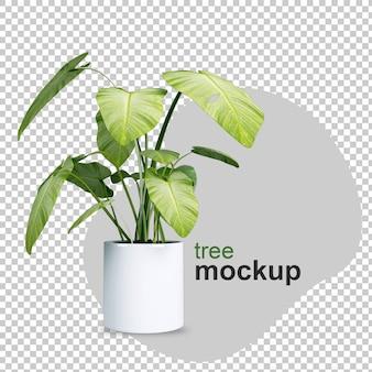 Mockup van 3d-gerenderde plant in potten