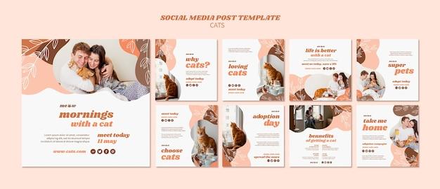 Modello di post social media gatti