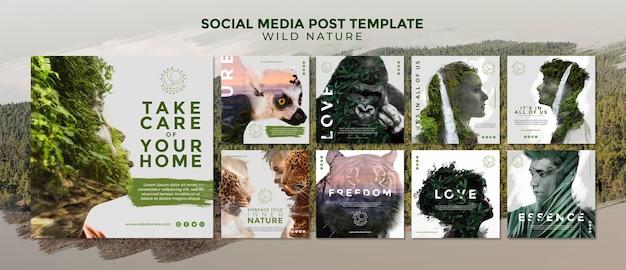 Modello di post social media natura selvaggia