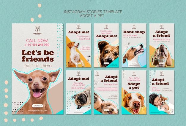 Modello di storie di instagram con adozione di animali domestici