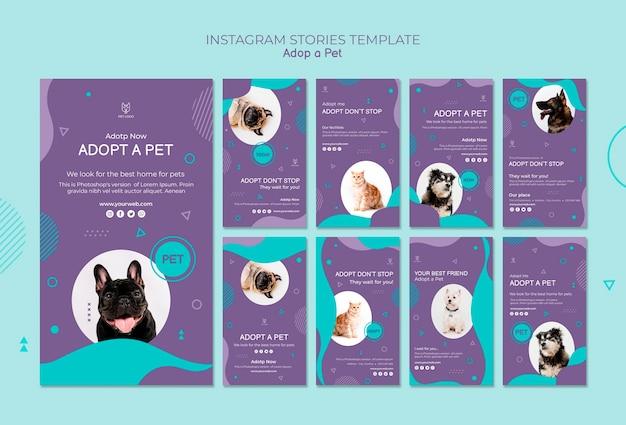 Modello di storie di instagram di adozione di animali domestici
