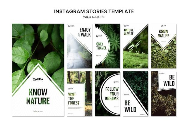 Modello di storie di instagram di natura selvaggia quadrata