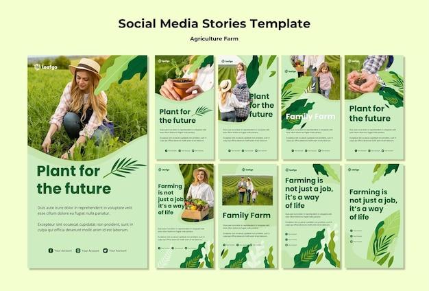 Modello di storie di social media di concetto dell'azienda agricola di agricoltura