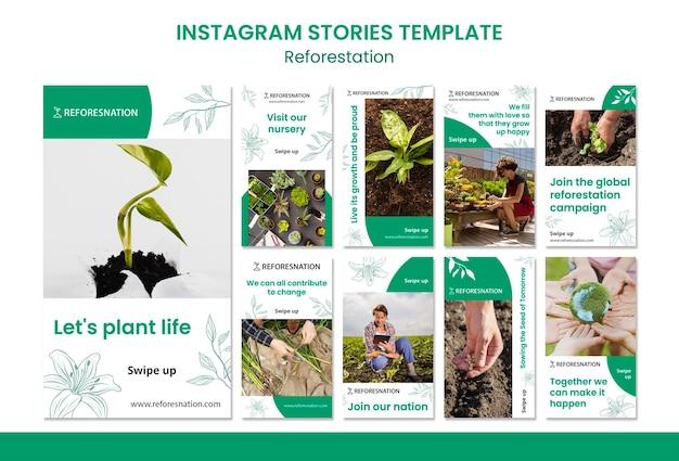 Modello di storie instagram di rimboschimento