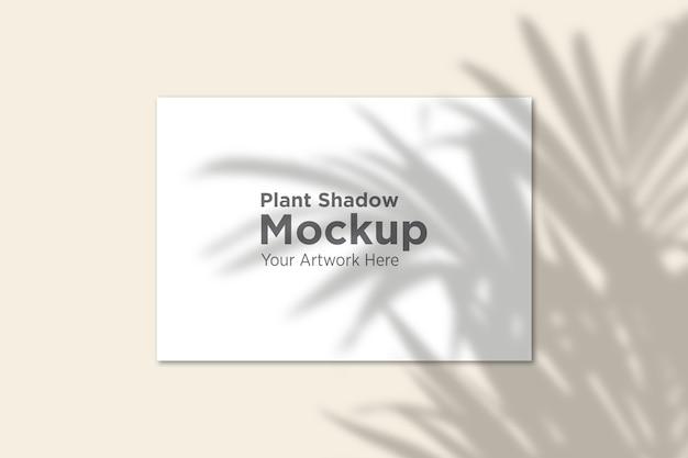 Mooie plantenschaduw over papieren mockup
