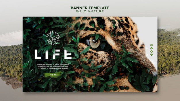 Naturaleza salvaje hermosos ojos verdes amarillos de una plantilla de banner de tigre