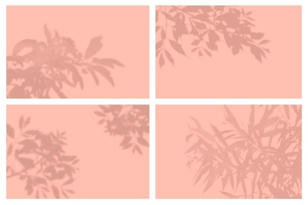 Ombra di foglie tropicali nel set di presentazione di effetti di luce naturale