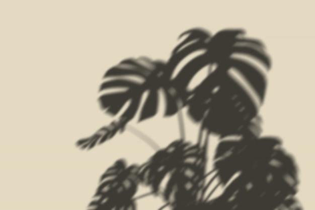 Overlay shadow botanical