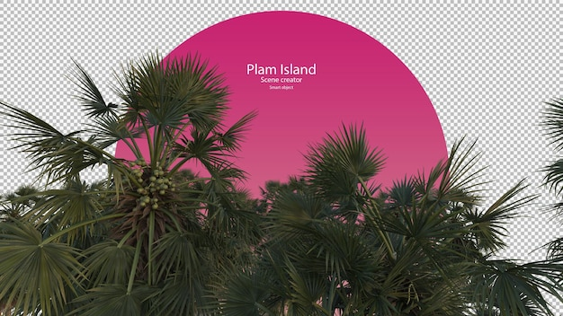 Palmbomen opzoeken weergave geïsoleerd