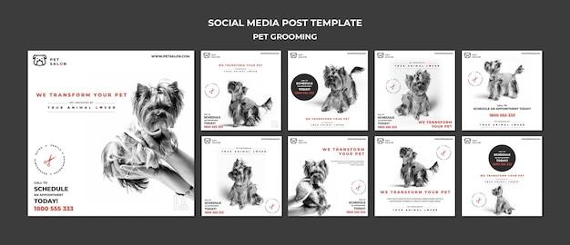 Paquete de publicaciones de instagram para la empresa de peluquería de mascotas