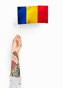 Persona che sventola la bandiera della romania