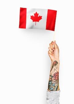 Persona que agita la bandera de canadá
