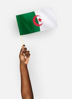Persoon die de vlag van de democratische volksrepubliek algerije zwaait