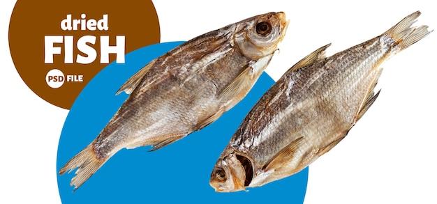 Pesce essiccato isolato su bianco