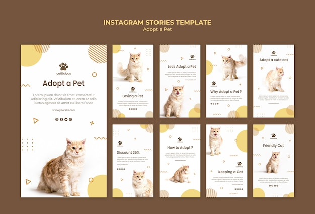 Pet adoptie instagram verhalen sjabloon