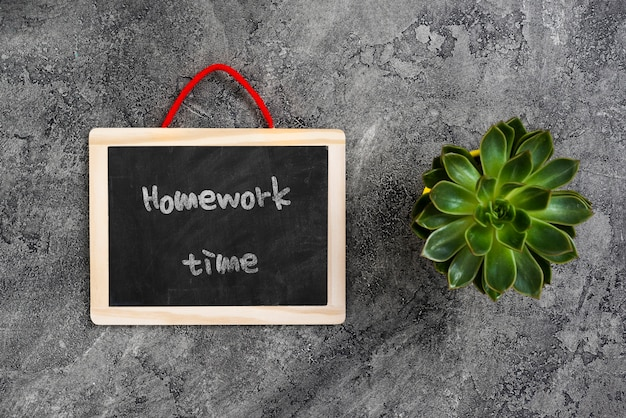 Plant en schoolbord op werkruimte