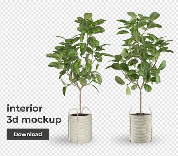 Plant in pot mockup decoratie
