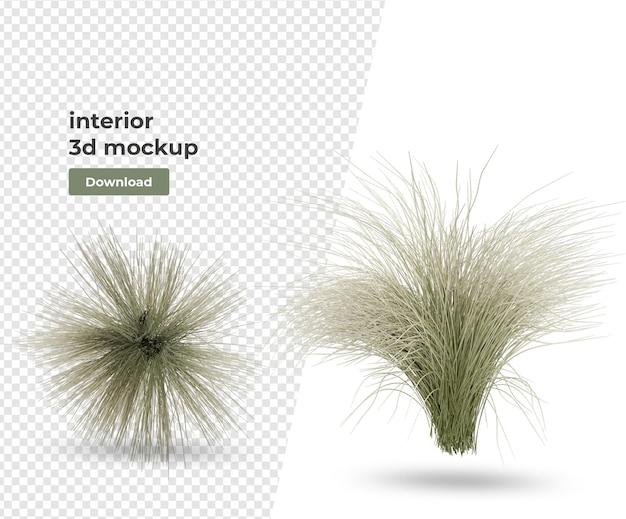 Plant in potdecoratie en interieur