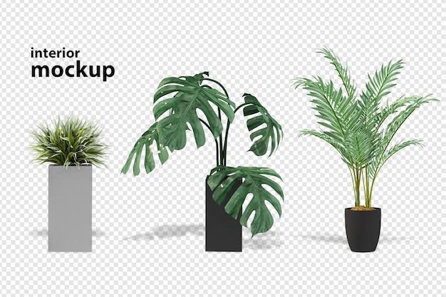 Plant mockup 3d-rendering geïsoleerd