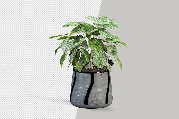 Plant mockup geïsoleerde bron
