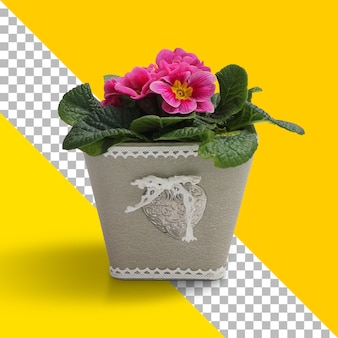 Planta fresca aislada en caja de hormigón
