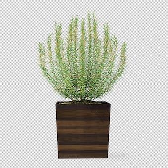 Planta en maceta de madera en 3d rendering