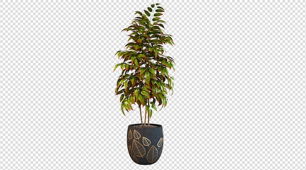 Plantas de colores planta de render 3d sobre fondo blanco.