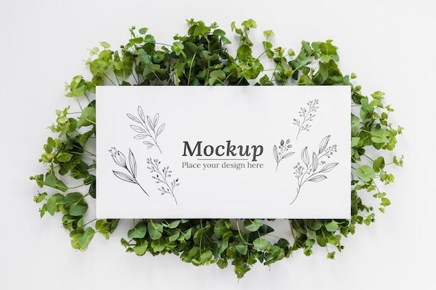 Planten arrangement mock-up met kaart