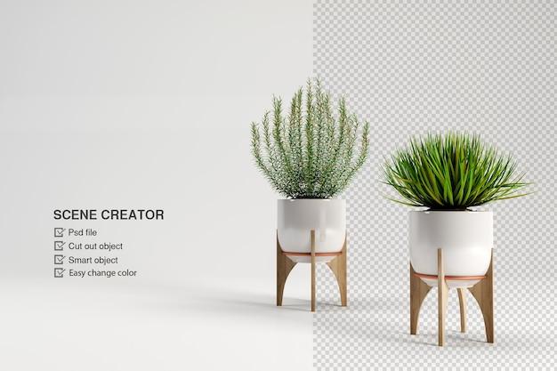 Planten in pot in 3d-redering op witte achtergrond