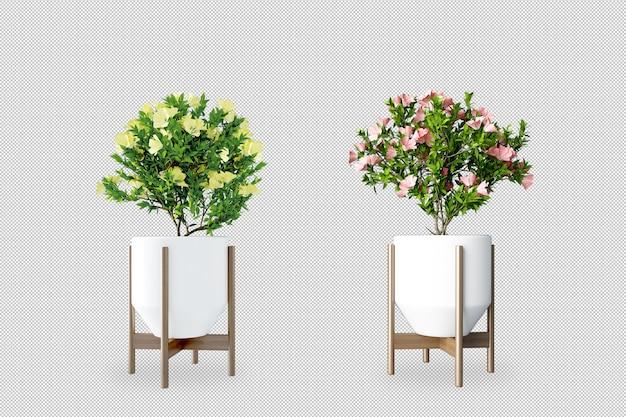 Planten in potten in 3d-rendering