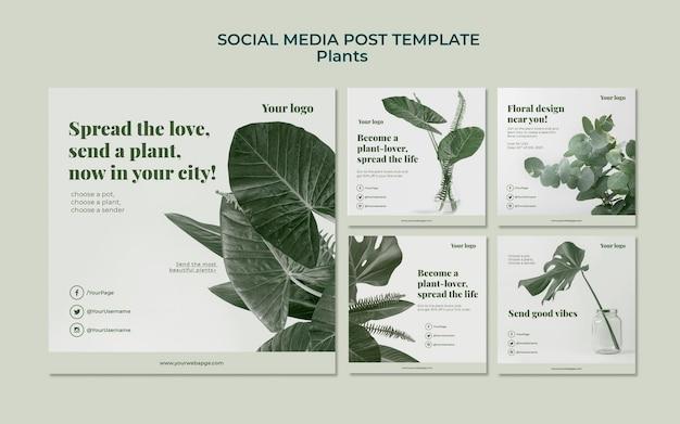 Planten sociale media plaatsen