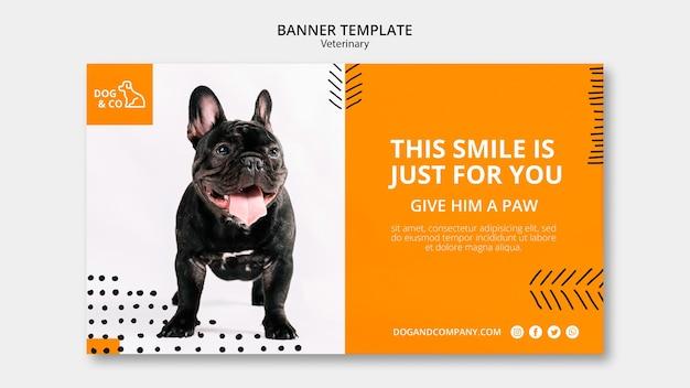 Plantilla de banner con diseño veterinario